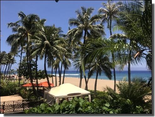 JALビジネスクラスで行くハワイ旅行2日目