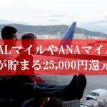 陸マイラ―祭りで25,000円還元