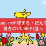 r陸マイラ―祭りで12,000円還元