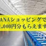 ANAショッピング「A-style」のキャンペーン