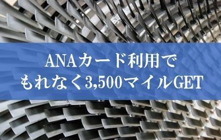 ANAカード利用ありがとうキャンペーン2019