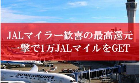 JAL陸マイラーの最高還元