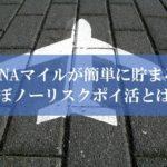 ANA陸マイラー祭りの裏技