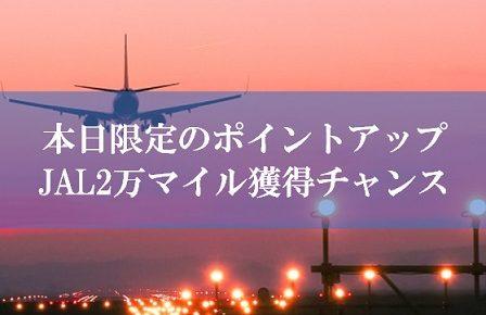 JAL陸マイラーの裏技